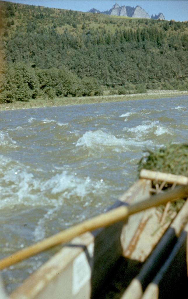 Spływ Dunajcem0026.jpg