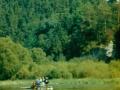 Spływ Dunajcem0012.jpg